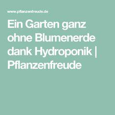 Ein Garten ganz ohne Blumenerde dank Hydroponik | Pflanzenfreude