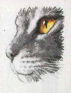 Cat's Eye Cross Stitch Kit by Vervaco