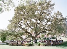 Rustic and Elegant Ojai Valley Inn Wedding