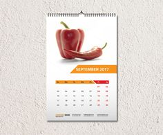 Wall Calendar Template  V