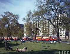 Hyde Park, London May 44