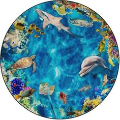 Flagship Carpet Round Kids Nylon Into The Sea Classroom Seating Rug - N/A, Multi - Round/Square Sea Photo, Blue Carpet, Carpet Colors, Wall Carpet, Round Area Rugs, Sea And Ocean, Cool Rugs, Carpet Design, Carpet Runner