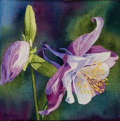 Heidi Rosner Watercolors | Floral Watercolor Paintings | Desert Landscapes | Fine Art Watercolors | Heidi Rosner Studios