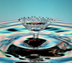 The beauty in a single drop of water..