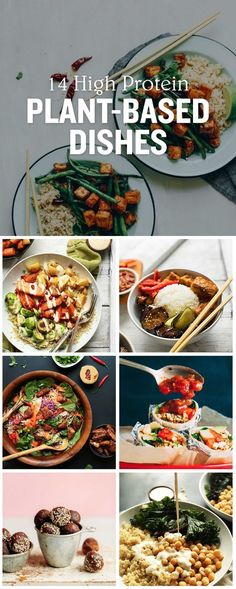 We've rounded up 14 High Protein Plant-Based Dishes that cover every meal of the day, along with some snack options to keep you feeling full when the cravings hit. Shared by Career Path Design. High Protein Vegetarian Recipes, Vegan Meal Prep, Healthy Protein, Vegan Foods, Vegan Dishes, Healthy Recipes, Plant Protein, High Protein Vegan Snacks, Vegetarian Food