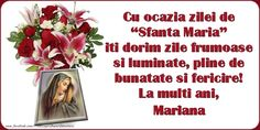 "Felicitari personalizate de Sfanta Maria - Cu ocazia zilei de ""Sfanta Maria"" iti dorim zile frumoase si luminate, pline de bunatate si fericire! La multi ani, Mariana Letter Board, Lettering, Face, Mariana, Happy Brithday, Quotes, Ongles, Drawing Letters, Texting"
