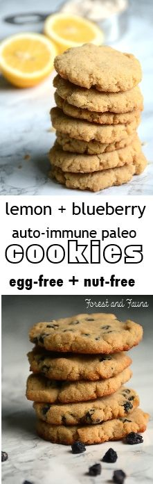 AIP Paleo Lemon + Blueberry Cookies - egg-free, nut-free, easy to make! http://www.forestandfauna.com/lemon-blueberry-cookies-aip-paleo/