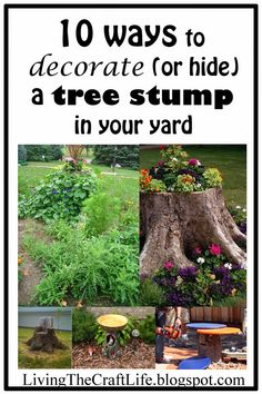 I was doing yard work and I was trying to think of some ways to avoid getting rid of a certain tree stump in our front yard. Tree stumps are. Backyard Garden Design, Lawn And Garden, Garden Art, Fairies Garden, Tree Stump Planter, Tree Stumps, Tree Stump Decor, Short Trees, Trees For Front Yard