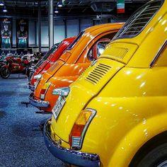 Fiat500nelmondo (@fiat500nelmondo) • Foto e video di Instagram Fiat 500, Small Cars, Video, Old Things, Pictures, Instagram, Photos, Miniature Cars, Grimm