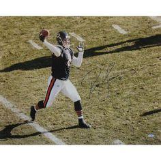Steiner Sports Rex Grossman Overhead Jersey 16x20 Photograph