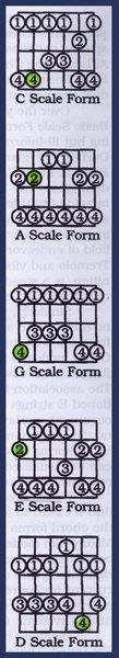 Learning Guitar: Pentatonic Scales and Lead Patterns Caged | Spinditty