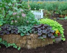 If you've been wanting to garden in raised beds because of poor soil quality or for weed control, hugelkultur might just be the thing!