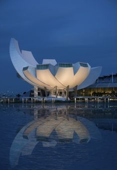 Lotus Flower ArtScience Museum in Singapore, architect Moshe Safdie. I love this building and its location. I specifically love the reflection of the building in the water. I like the lighting illuminating the building from below. Unusual Buildings, Interesting Buildings, Amazing Buildings, Modern Buildings, Architecture Unique, Futuristic Architecture, Singapore Architecture, Art Science Museum, Around The Worlds