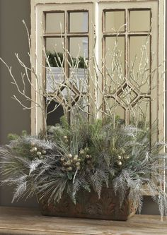 Arrangement: Royal Spruce