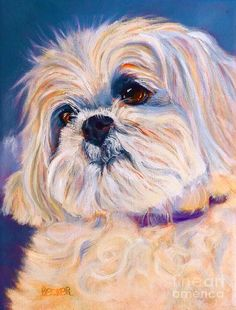 Toy Dog Drawings for Sale