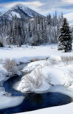 Wasatch Mountains In Winter Photograph by Utah Images Big Cottonwood Creek winds through the snow covered Wasatch Mountains at the mouth of Cardiff Fork Winter Szenen, Winter Magic, Winter Time, Winter Season, Cottonwood Creek, Snow And Ice, Snow Scenes, Winter Beauty, Winter Photography