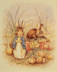 Beatrix Potter Children's Book Illustration Art