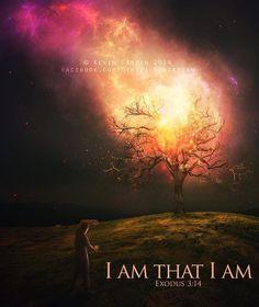 I am that I am.  TonyEvans.org
