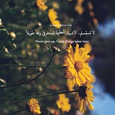 translation #translation_services_Amman #Jordan http://www.daribnkhaldun.com/