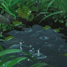 ghibli water animated gif - i like rainy day Anime Gifs, Anime Art, Arte 8 Bits, The Garden Of Words, Japon Illustration, Animation Reference, Rain Animation, Aesthetic Gif, Aesthetic Green