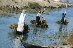 The Marsh Arabs of Iraq