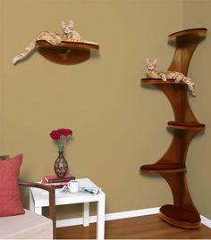 Cat tree. I like this stain color. If I DIY this, I would make food bowl holes in upper platforms so the kitties can eat without dog distractions. Attach to wall with brackets or French cleats so it can be somewhat easily removed for cleaning?