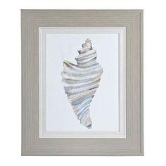 Watercolor Drill Shell Framed Art Print