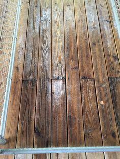 Dog Kennels Hardwood Floors Work Es Wood Plus Shelter Dogs