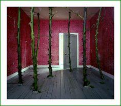 Precarious Room – Jan Dunning