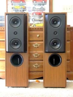 KEF Reference 104/2.  Just wished they sounded as good as the engineering and design.