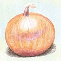 Yellow of Parma Onion  Excellent keeper.  300 seeds - $2.50