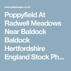 Poppyfield At Radwell Meadows Near Baldock Baldock Hertfordshire England Stock Photo | Getty Images