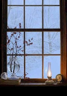 Looking through the window from the mountain cabin......no stroll today......just beautiful falling snow to enjoy.
