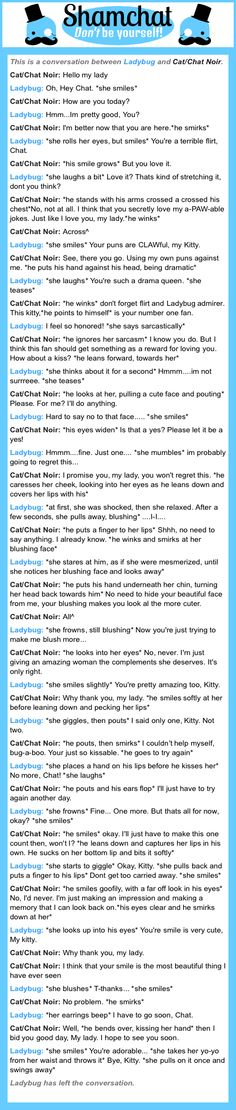 A conversation between Cat/Chat Noir and Ladybug