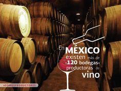 En México existen más de 120 bodegas productoras de vino. SAGARPA SAGARPAMX #SOMOSPRODUCTORES