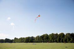 Der Hamburger Stadtpark ist eine grüne Oase und wird je nach Jahreszeit von unterschiedlichen Gästen bevölkert. Im Sommer sind es unzählige Grillfans, gen Herbst eher die Drachenliebhaber.