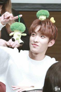 Awhhhh I love broccolis now Mingyu Wonwoo, Seungkwan, Woozi, Seventeen Lee Seokmin, Choi Hansol, Seventeen Debut, Best Song Ever, Block B, Pledis 17
