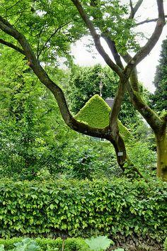 Superb Im Botanischen Garten in K ln