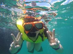 Snorkeling the third largest natural coral reef on the planet, the Key West Barrier Reef
