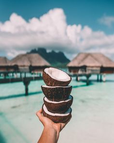 Bora Bora, Our Four Seasons Resort Experience – salty luxe Beach Aesthetic, Summer Aesthetic, Aesthetic Photo, Aesthetic Pictures, Ocean Wallpaper, Summer Wallpaper, Aesthetic Backgrounds, Aesthetic Wallpapers, Summer Vibes