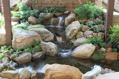 small water gardens, outdoor living, patio, ponds water features, This small pond and waterfall is tucked beside a patio situated under a deck A great solution for a spot that was once an eyesore