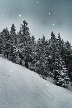 r2 & ndash; d2: Oberwiesenthal neve por (Dandea Radu Stefan)