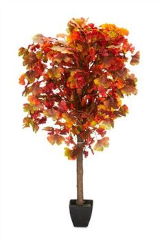 Buy Lit Gingko Tree from the Next UK online shop Autumn Inspiration, Garden Inspiration, Led Tree, Artificial Flowers And Plants, Glass Flower Vases, Orange House, Garden Trees, Modern Glass, Autumn Trees