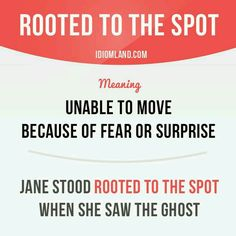 Rooted To The Spot