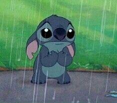 Poor Stitch in the rain