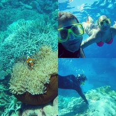 Nice weekend at the Great Barrier Reef   @nneamau  #greatbarrierreef #nemo #queensland #australia #finishgirl #austrianguy #cairns #snorkeling #scubadiving #amazing #goodweekend #greattime #fun #swim by fabian__franke http://ift.tt/1UokkV2