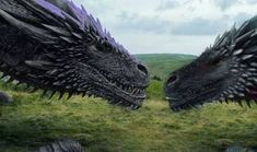 Mordaelus & Tafyres Tafyres let out a grumble, softly sniffing the dragons snoutt. ~~~~ An edit yourselves in by Boi… Game Of Trones, Wings Of Fire, Lion Sculpture, Fantasy, Let It Be, Statue, Dragons, Animals, Annie