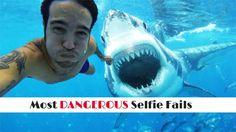 http://paccodes.net/the-most-dangerous-selfie-fails-ever/