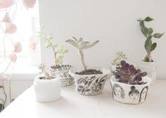 leah reena: Ceramics