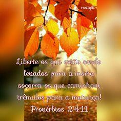 #Provérbios #Sabedoria #Salvação #PregueOEvangelho #Libertação #Cruz #Jesus #SóEleSalva #DeusFiel #rosiigiil